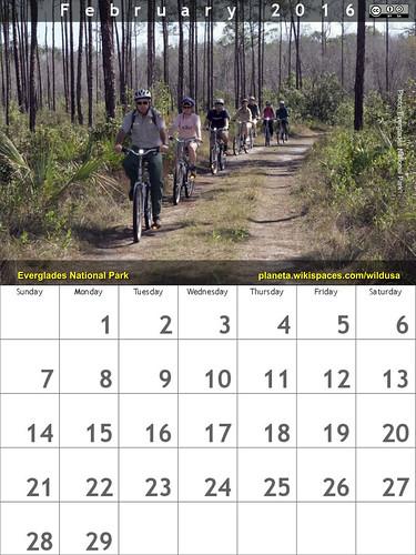 February 2016 Calendar: Long Pine Key Nature Trail, Everglades National Park @evergladesnps