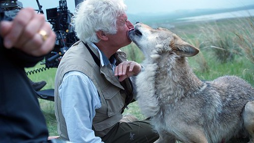 Wolf Totem - backstage - Jean-Jacques Annaud and a Wolf