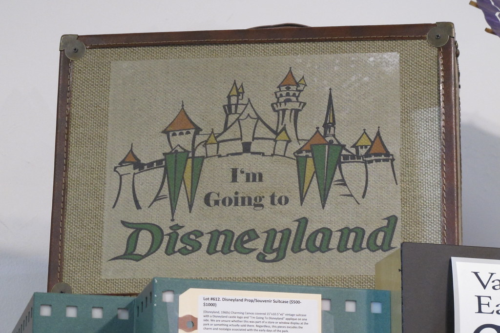 Disneyland suitcase
