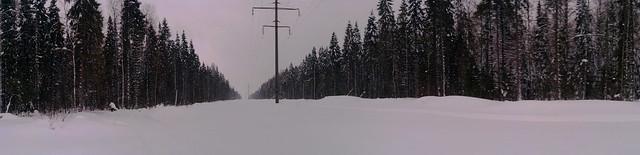 на лыжах с Динамо на стадион Сметаниной