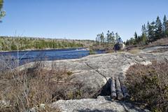Hobson's Lake Loop