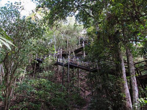 Tikal: pour monter au sommet du Temple à la Double Tête de Serpent