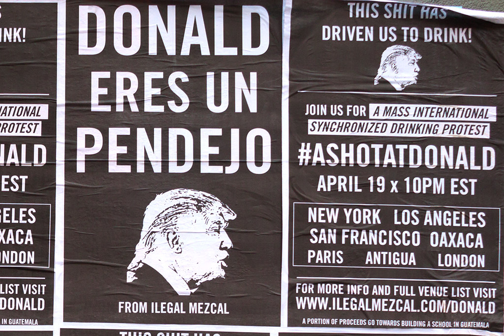 DONALD ERES UN PENDEJO--Lower East Side (detail)