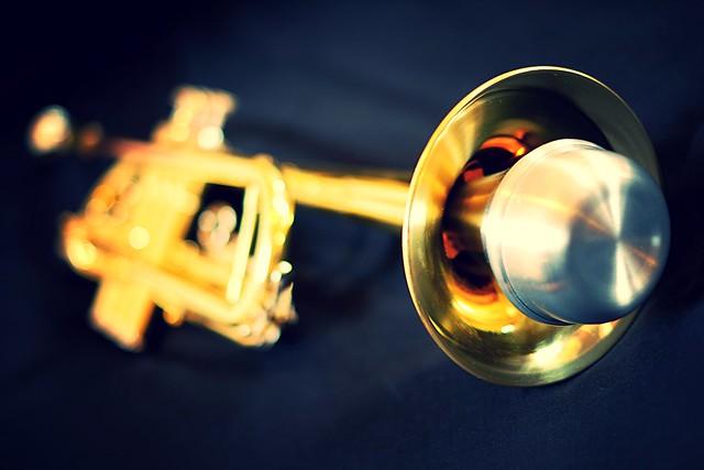 Trumpet mute