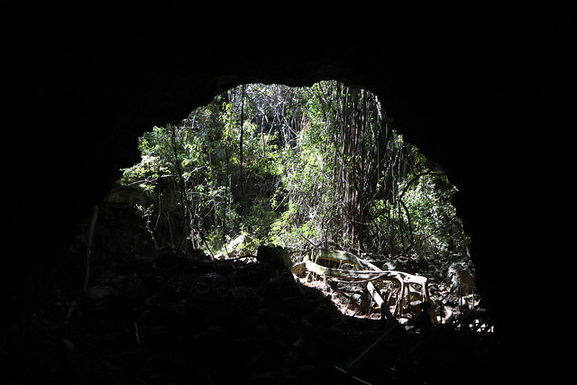 澳洲昆士蘭Undara 火山NP-熔岩洞-20141116-賴鵬智攝-11