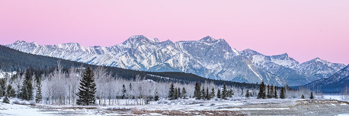 pink trees winter shadow mountains forest sunrise point landscape rockies pano canadian telephoto alberta davidthompsonhighway 2016 preachers