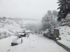 Winter snow storm Dec 2015