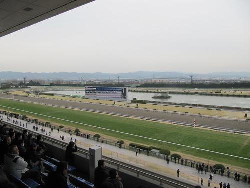 京都競馬場の湖