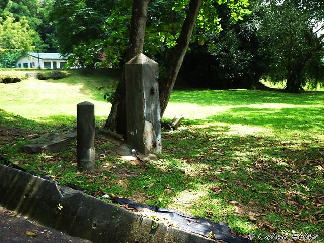Bukit Timah Ave 03