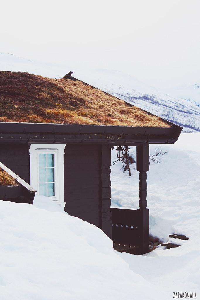 White - Norwegian Mood | fot. ZAPAROWANA.PL