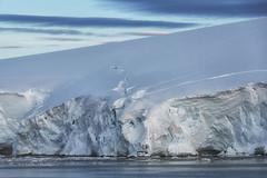 DSC_0658-Ice Shelf Shadow
