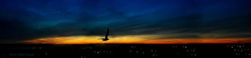 different photos lumière nuages soir crépuscule nuit magnifique coucherdesoleil clarté lourds sombres menaçant voldenuit lacdeschênes aylmerqc monstudioàcielouvert simpa©