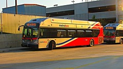 WMATA Metrobus 2015 New Flyer Xcelsior XN40 #2831 & 2860