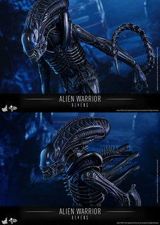 HOT-TOYS-ALIEN-WARRIOR-05