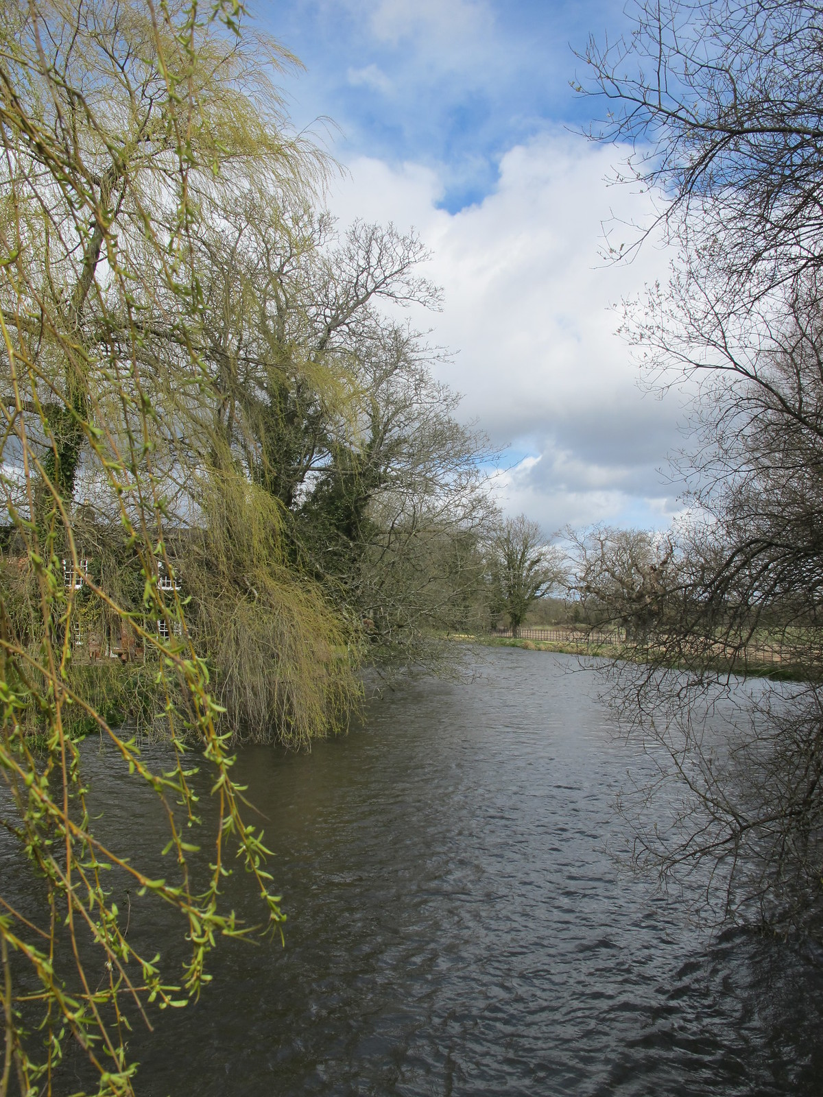 Test River at Oakley Farm SWC Walk 58 Mottisfont and Dunbridge to Romsey taken by Karen C.