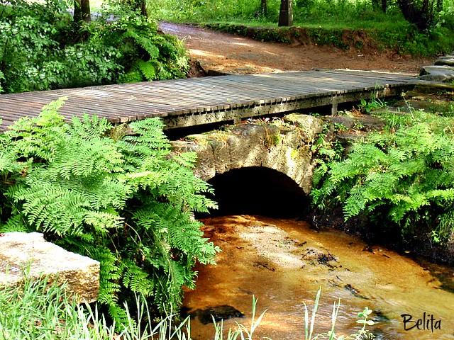Bridge - Roman - Galicia - Spain
