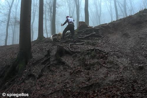 Trailrun-16
