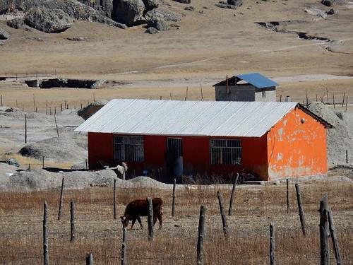 San Ignacio - boerderij