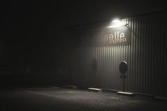 brouillard-06 / coccinelle nocturne