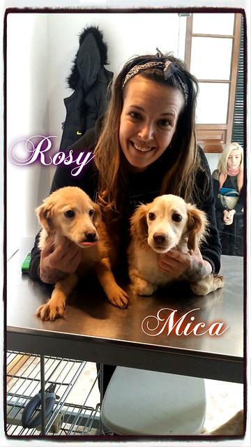Rosy y Mica