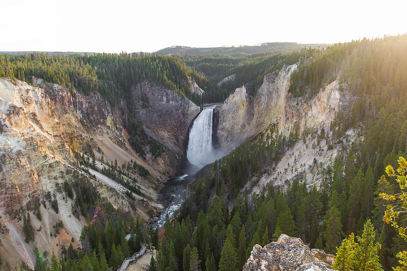 Yellowstone-35