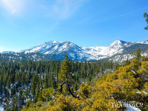 Lake Tahoe Winter Road Trip Highlights