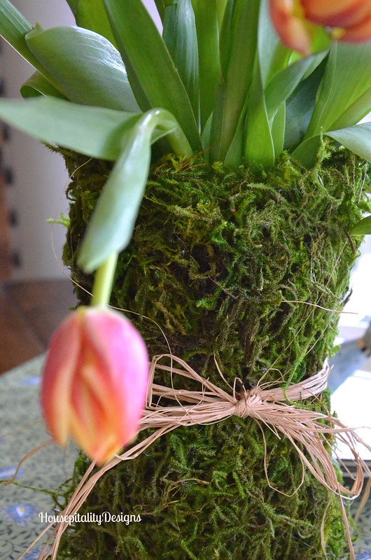 Moss Covered Vase - Housepitality Designs