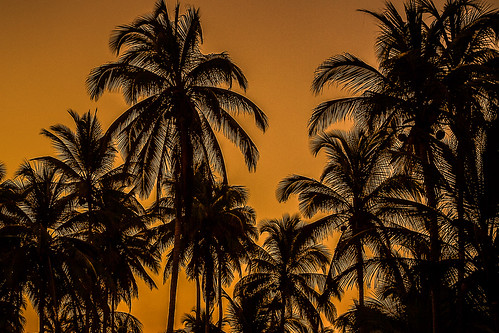 sunset beach sunrise canon colombia silhouettes 7d palomino canon7d elmatuy leaningladder
