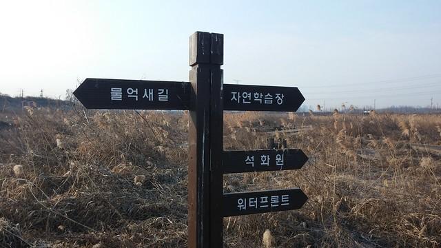 공릉천 관찰일기-아듀 아침산책