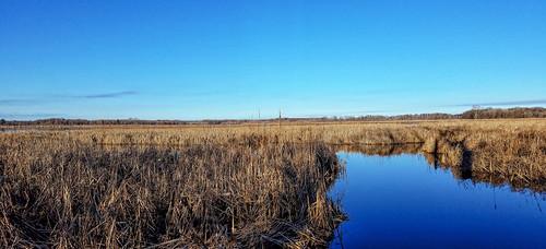 Grassy Lake State Natural Area