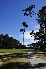 Poppy Hills Golf Course - Pebble Beach, CA, June 26, 2014