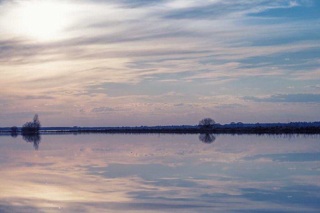 Quiet bayou