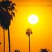 California by Art by 2wenty