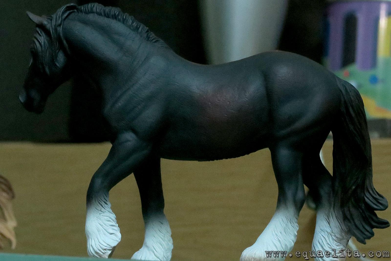 Shire Horse Mare