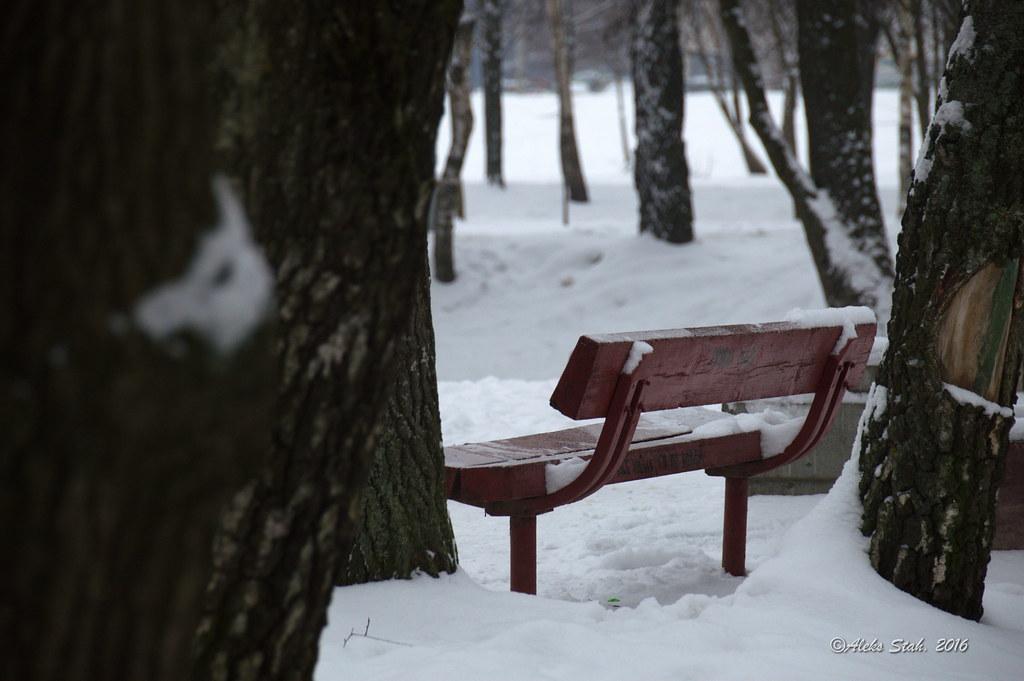 50 оттенков зимы 017