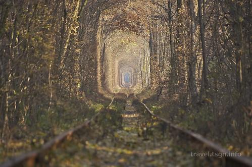 【写真】東欧周遊 : 愛のトンネル