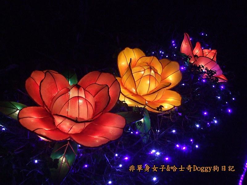 2013台北燈節在花博12