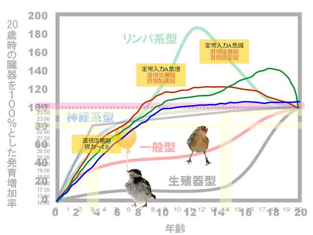 スキャモン成長曲線|定常入力A理論