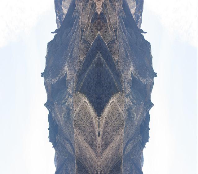 Portrait of a fallen Cinder Cone