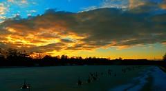 Hakaniemenranta, Helsinki, Feb 15th 2016. #Hakaniemenranta #hakaniemi #landscape #cityscape #sunset #samsunggalaxys4active #Helsinki #Finland