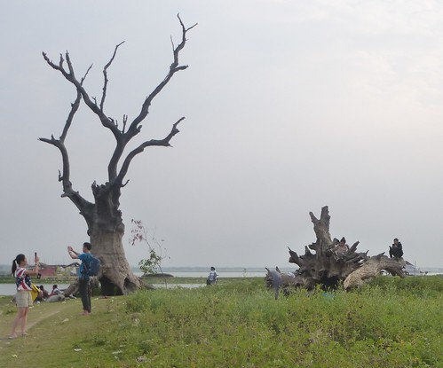 M16-Mandalay-Amarapura-Pont U Bein (17)