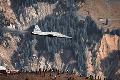 Northrop F-5E Tiger II during AXALP 2015 by The best from aviation