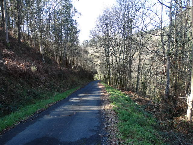 Carretera en la Ruta de A Veiga do Mandeo a Xiela