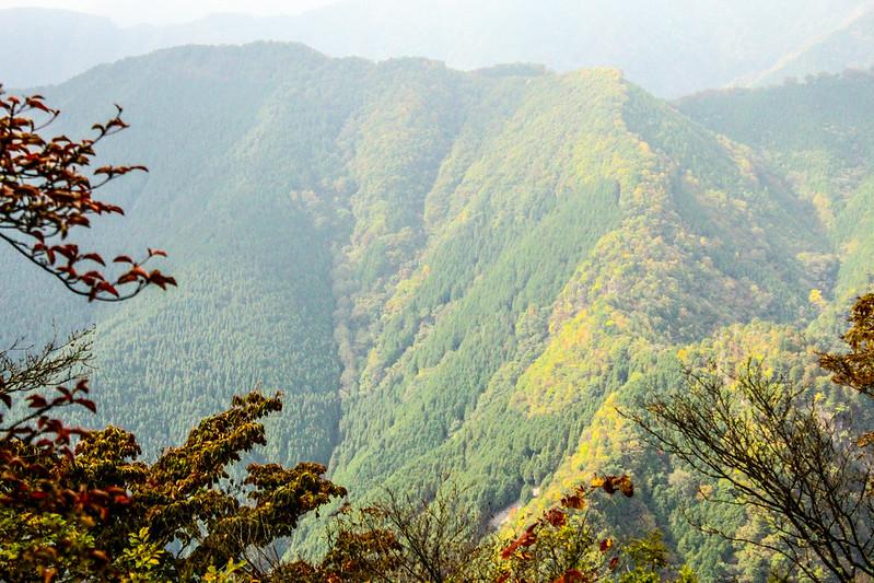 20101023-川苔山-0078.jpg