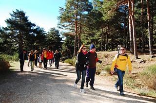 Senderismo Madrid 2013