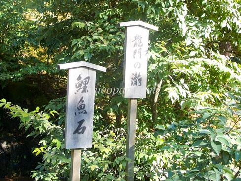 金閣寺鯉魚石りぎょせき画像