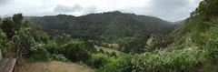 Valley View trail, Pfeiffer Big Sur