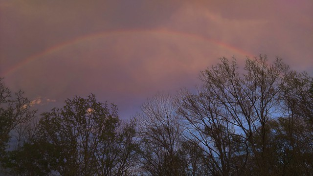 Turkey Mountain Rainbow - Topaz Glow - Mysterious at 58pct