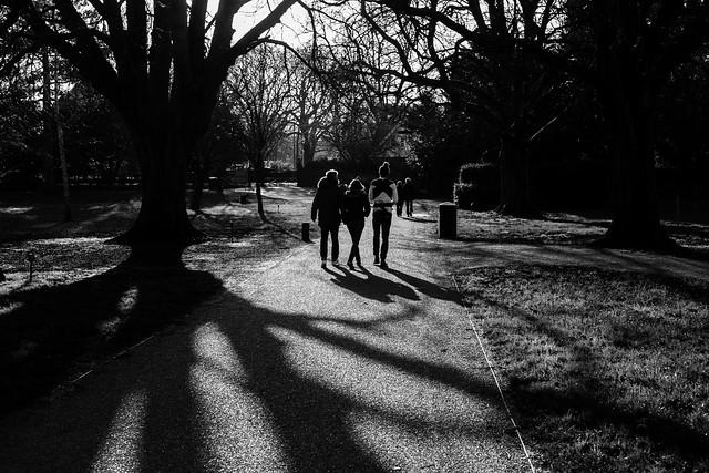walpole walk