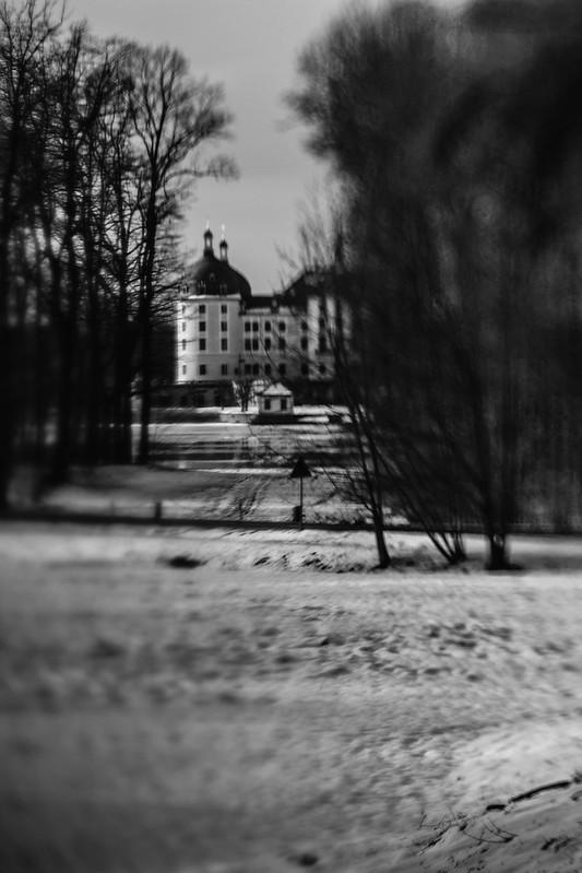 Moritzburg Castle II